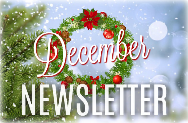 Catch up on all the YIS happenings with our Monthly Reporter Newsletter. December issue now available.