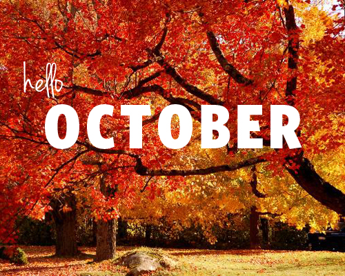 October Newsletter is Now Available!