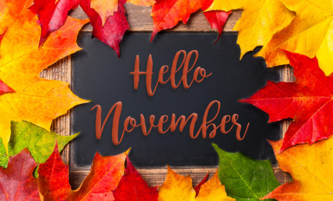 November Newsletter Now Available!